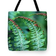 The Fern Tote Bag