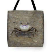 The Fiddler Crab On Hilton Head Island Tote Bag