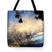 The Final Curtain Tote Bag