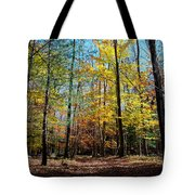 The Final Days Of Autumn Color Tote Bag