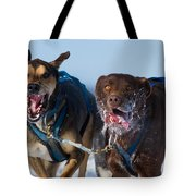 The Final Effort Tote Bag by Mircea Costina Photography