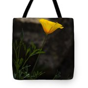 The First Poppy  Tote Bag