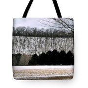 The First Snow New Hope Pa Tote Bag