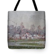 The First Snowflakes Of The Season  Tote Bag