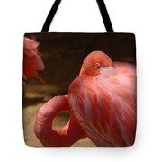 The Flamingo Wakens Tote Bag
