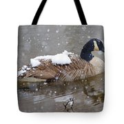 The Flurry Collector Tote Bag