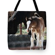 The Flying Colt With The Big White Feet Tote Bag