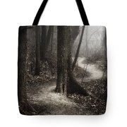 The Foggy Path Tote Bag by Scott Norris
