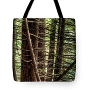 The Forest Combed By The Wind In The Lake Tote Bag