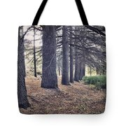 The Forest Of A Thousand Stories Tote Bag
