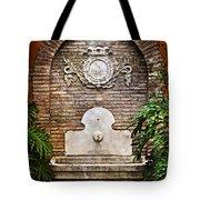 The Fountain Tote Bag