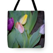 The Four Colours Tote Bag