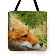 The Fox 7 Tote Bag