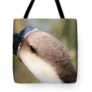 The Friendly Guy Tote Bag