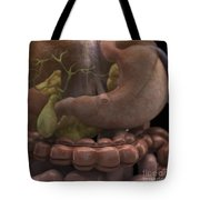 The Gallbladder And Stomach Tote Bag