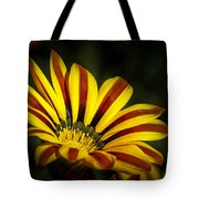 The Gazania Tote Bag