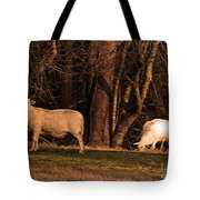 The Gazing And Grazing Sheep Tote Bag