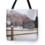 The Gentle Thief Of Colours Tote Bag