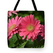 The Gerber Triplets Tote Bag