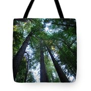 The Giant Redwoods I Tote Bag