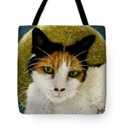 The Gifted Healer Tote Bag