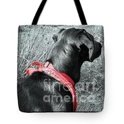The Girl In Red Tote Bag