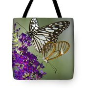 The Glasswing And A Friend  Tote Bag