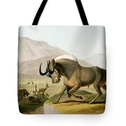 The Gnoo, 1804 Tote Bag