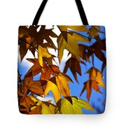 The Golden Hues Of Autumn  Tote Bag