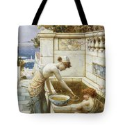 The Goldfish Pond Tote Bag