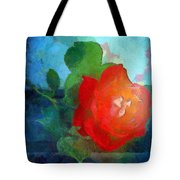 The Grace Of God Tote Bag