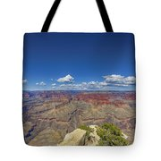 The Grand Canyon--another Look Tote Bag