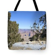 The Grand Canyon In January Tote Bag