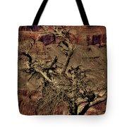 The Grand Canyon Vintage Americana V Tote Bag