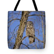 The Great Gray Tote Bag