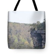 The Great Stone Door Grundy County Tennessee Tote Bag