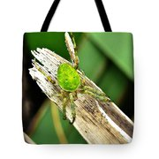 The Green Spider Tote Bag