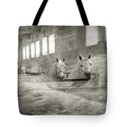 The Grey Mares Tote Bag