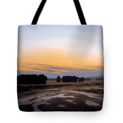 The Grosse Gehege Near Dresden Tote Bag