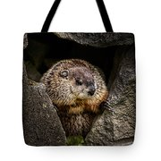 The Groundhog Tote Bag