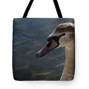 The Haughty Goose  Tote Bag