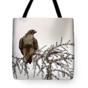 The Hawk Tote Bag