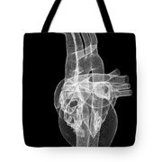 The Heart And Major Vessels Tote Bag