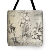 The Heart And The Circulation Tote Bag