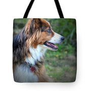 The Heart Of Dixie Tote Bag