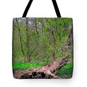 The Hedge Witch Tote Bag