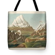The Heights Of The Old And New World Tote Bag