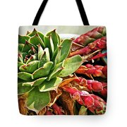The Hen And Her Chicks  Tote Bag
