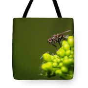 The Hidden World Of Khaki - Featured 3 Tote Bag