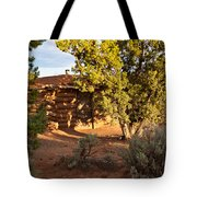 The Hogan Canyon Dechelly Park Tote Bag